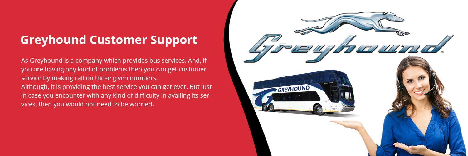 Greyhound Customer Support